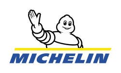 Michelin Energy Guard